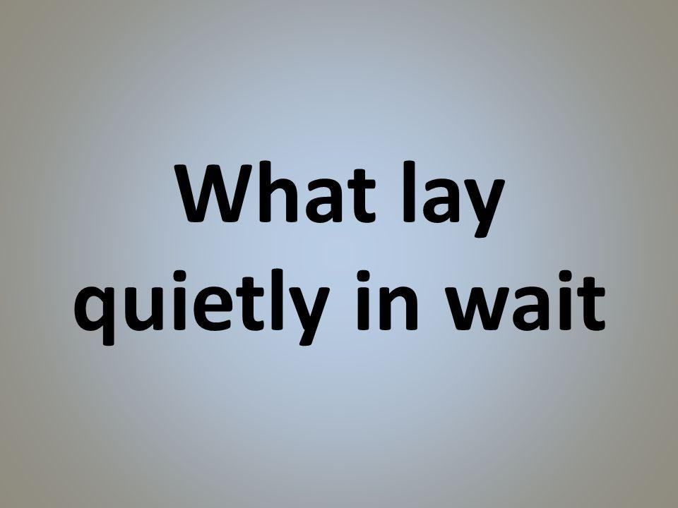What lay quietly in wait