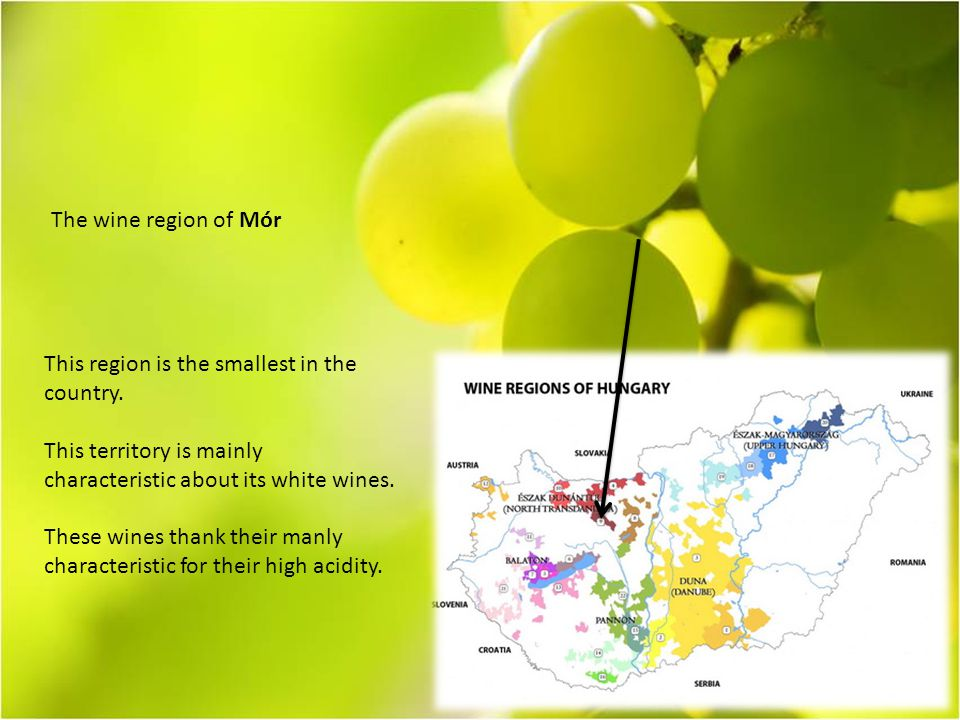 The wine region of Mór This region is the smallest in the country.