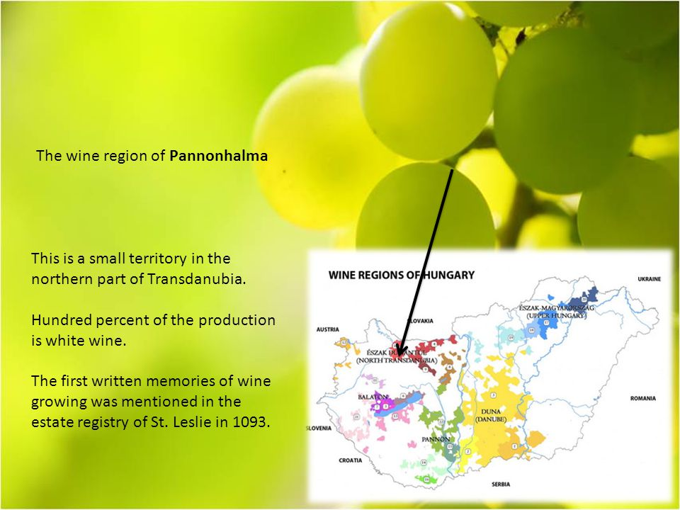 The wine region of Pannonhalma This is a small territory in the northern part of Transdanubia.