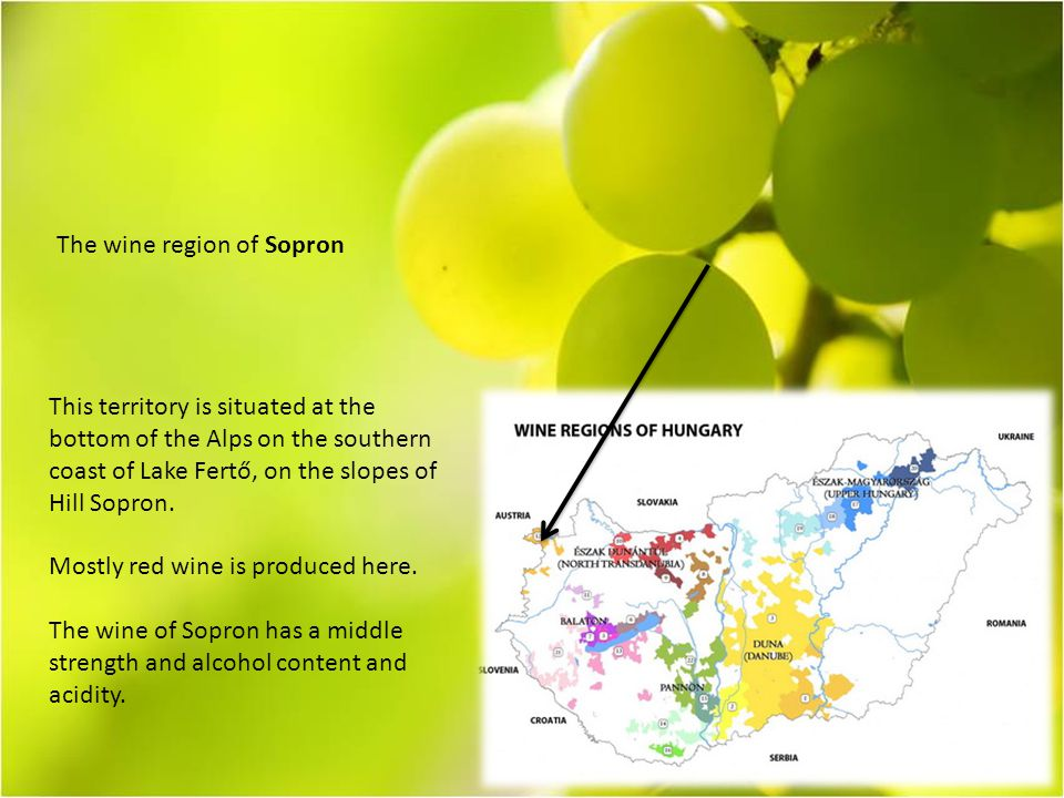 The wine region of Sopron This territory is situated at the bottom of the Alps on the southern coast of Lake Fertő, on the slopes of Hill Sopron.