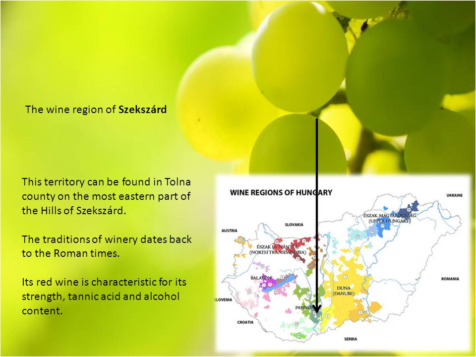 The wine region of Szekszárd This territory can be found in Tolna county on the most eastern part of the Hills of Szekszárd.