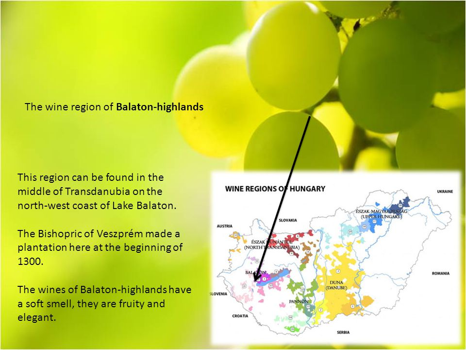 The wine region of Balaton-highlands This region can be found in the middle of Transdanubia on the north-west coast of Lake Balaton.