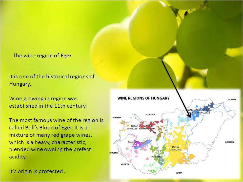 The wine region of Eger It is one of the historical regions of Hungary.