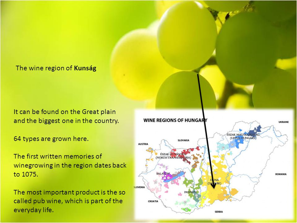 The wine region of Kunság It can be found on the Great plain and the biggest one in the country.