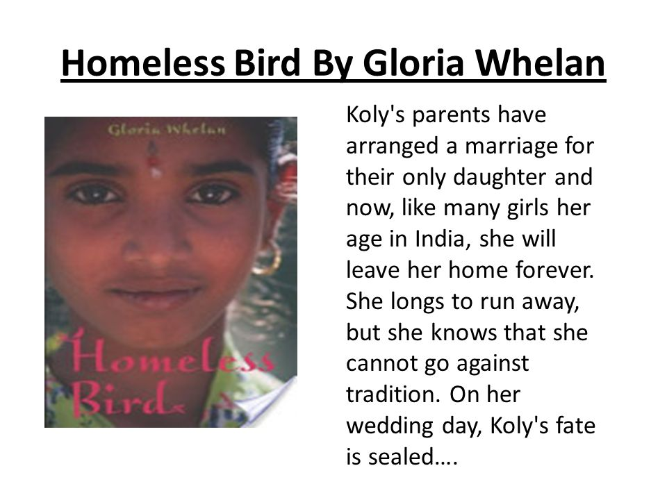 Homeless Bird By Gloria Whelan Koly s parents have arranged a marriage for their only daughter and now, like many girls her age in India, she will leave her home forever.