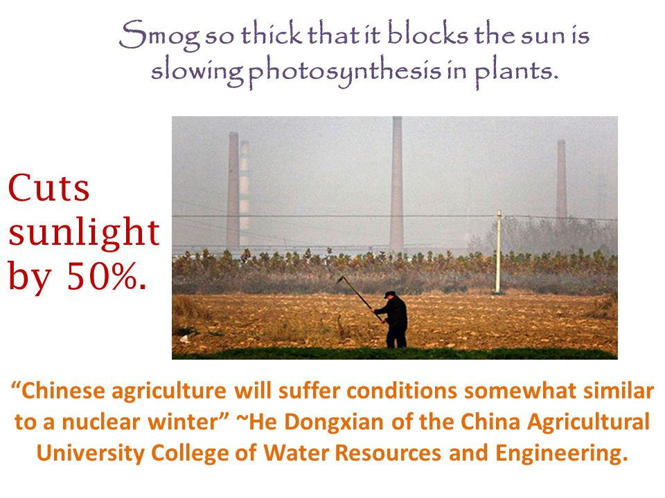 Chinese agriculture will suffer conditions somewhat similar to a nuclear winter ~He Dongxian of the China Agricultural University College of Water Resources and Engineering.