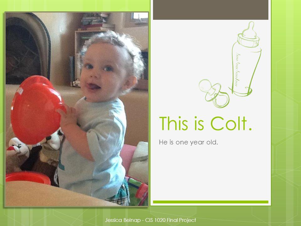 Colt B. Ross The First Month Jessica Belnap CIS 1020 – Summer 2012 Final Project August 1, 2012