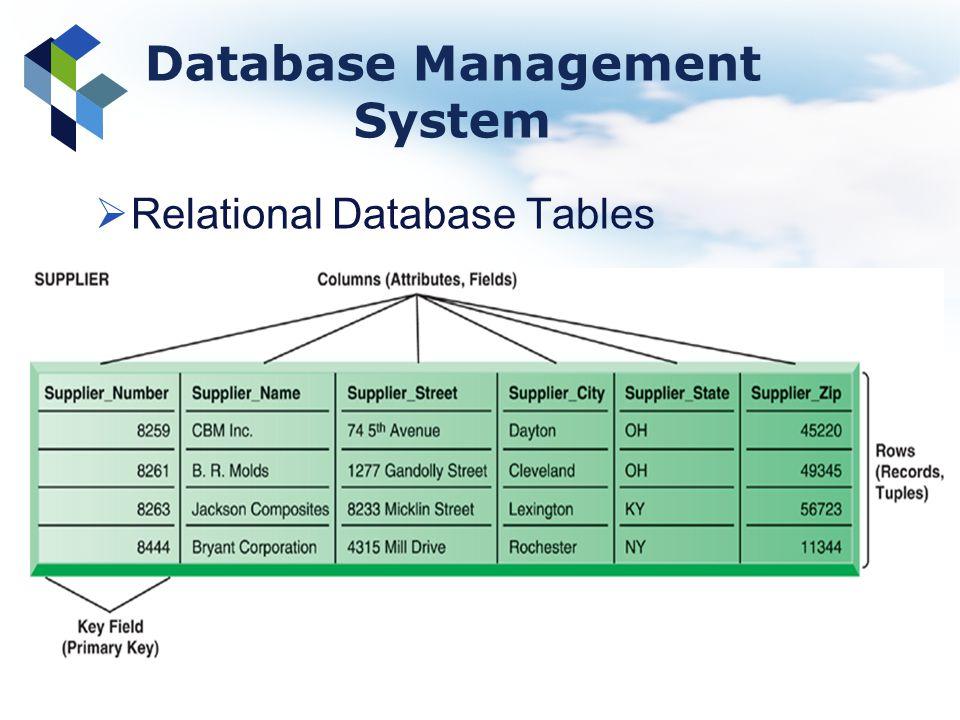 Database Management System Relational Database Tables