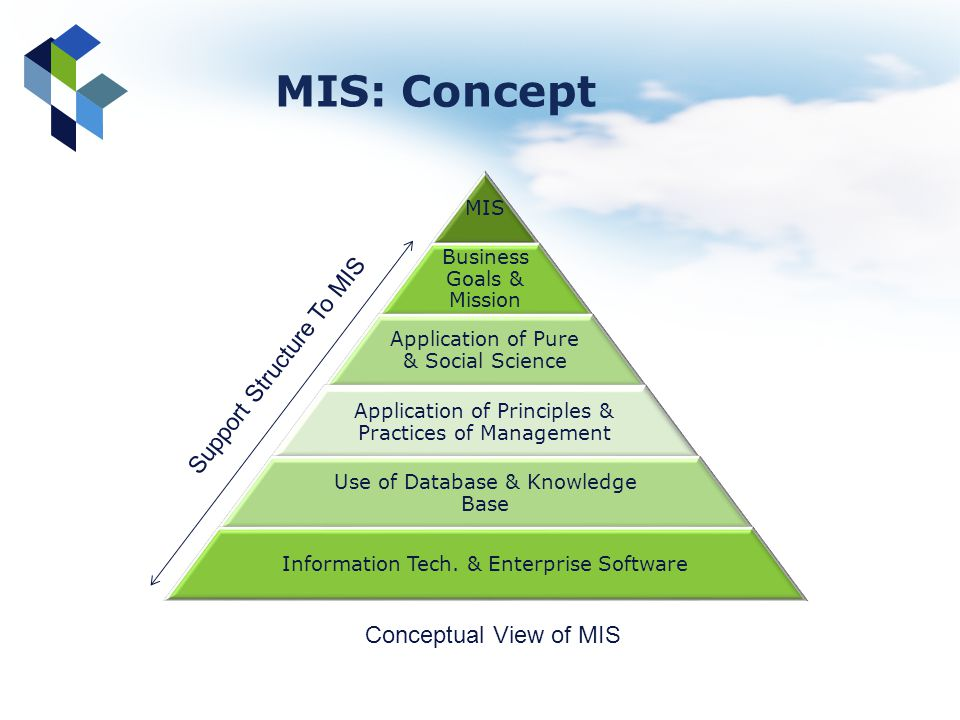 MIS Business Goals & Mission Application of Pure & Social Science Application of Principles & Practices of Management Use of Database & Knowledge Base
