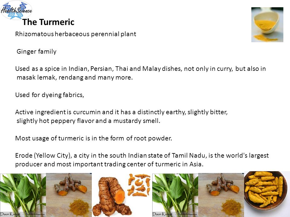 The Turmeric Rhizomatous herbaceous perennial plant Ginger family Used as a spice in Indian, Persian, Thai and Malay dishes, not only in curry, but al
