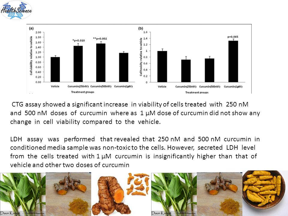 45 CTG assay showed a significant increase in viability of cells treated with 250 nM and 500 nM doses of curcumin where as 1 μM dose of curcumin did n