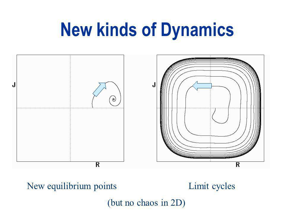 New kinds of Dynamics New equilibrium pointsLimit cycles (but no chaos in 2D)