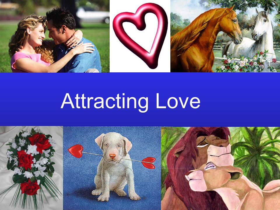 Attracting Love