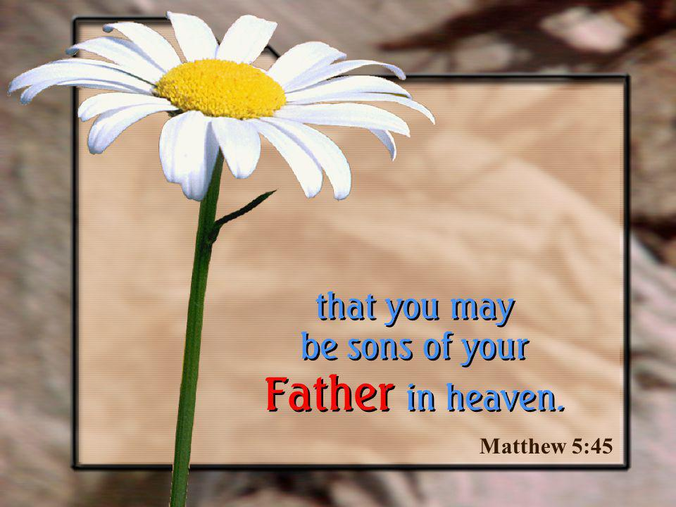 Matthew 5:45 that you may be sons of your Father in heaven.