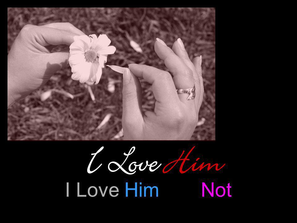 I Love Him I Love Him Not