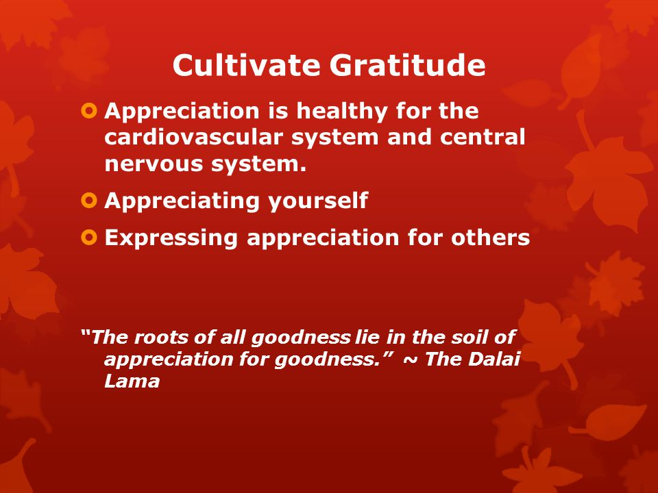 Cultivate Gratitude Appreciation is healthy for the cardiovascular system and central nervous system.