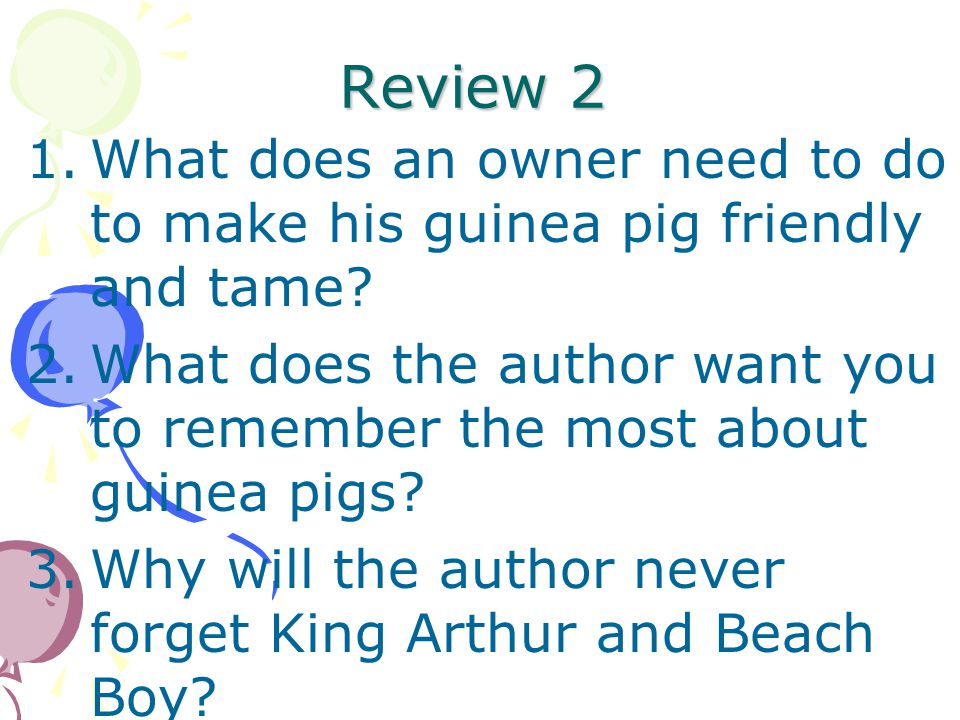 Review 1.How are guinea pigs and pigs alike and different? 2.What does the author think about guinea pigs? 3.How does the author know so much about gu