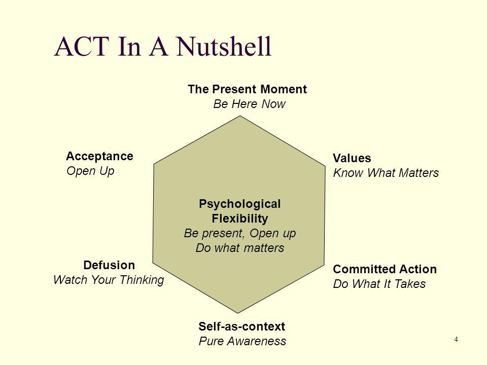 4 ACT In A Nutshell Psychological Flexibility Be present, Open up Do what matters The Present Moment Be Here Now Defusion Watch Your Thinking Acceptan