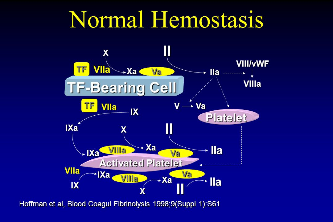 CAVEATS REGARDING INFLAMMATION Inflammation has multiple humoral, cellular components, and undergoes amplification.