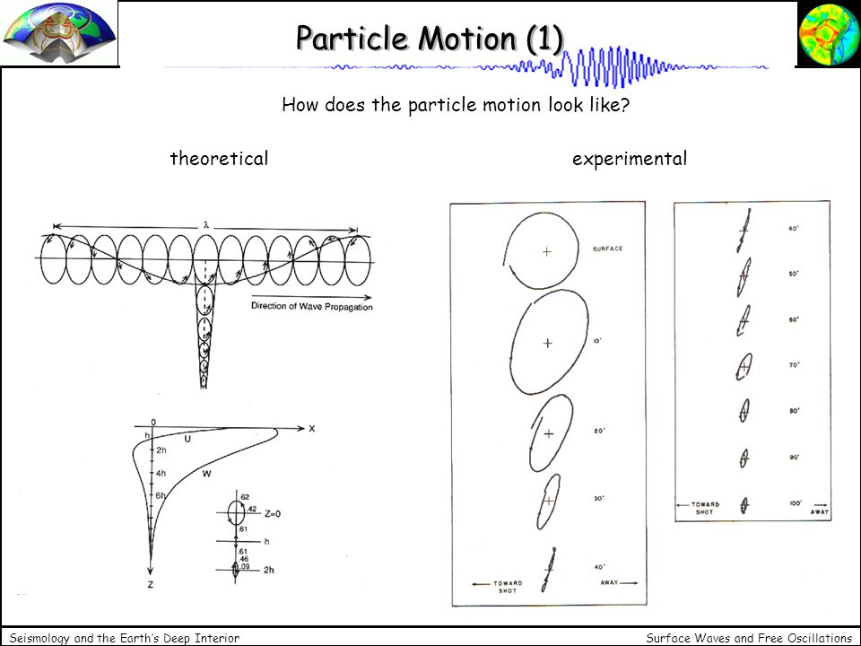 Surface Waves and Free Oscillations Seismology and the Earths Deep Interior Particle Motion (1) How does the particle motion look like? theoretical ex