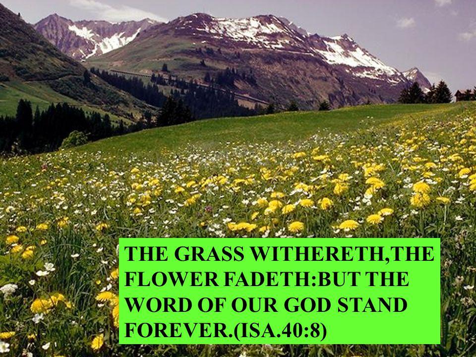 SANCTIFY THEM THROUGH THY TRUTH: THY WORD IS TRUTH (ST.JOHN 17:17)