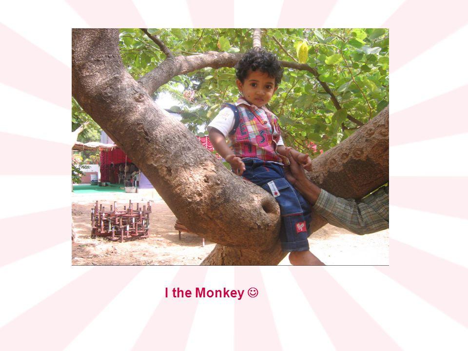 I the Monkey