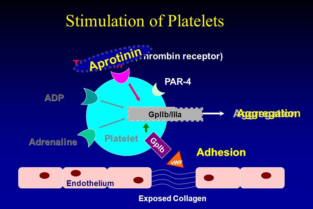 Adhesion GpIIb/IIIa Stimulation of Platelets GpIIb/IIIa Aggregation ADP Adrenaline Thrombin Platelet GpIb Exposed Collagen Endothelium vWF PAR-1 (Thrombin receptor) PAR-4 GpIIb/IIIa Aggregation GpIIb/IIIa Aggregation Adhesion Aggregation Adhesion ADP Adrenaline Aprotinin