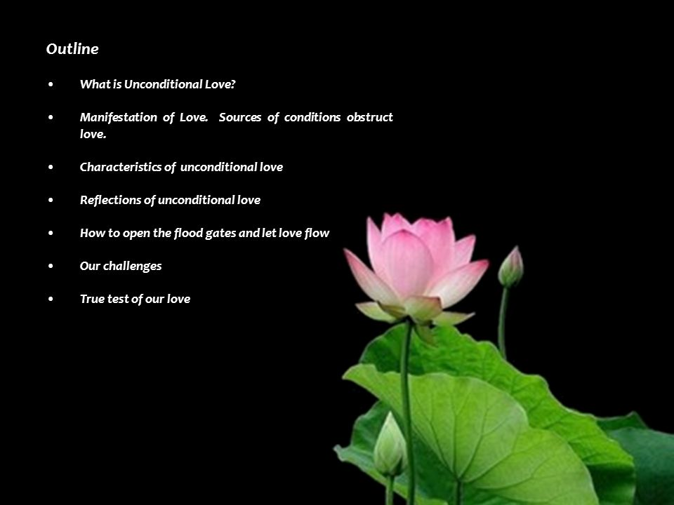 Characteristics of unconditional love