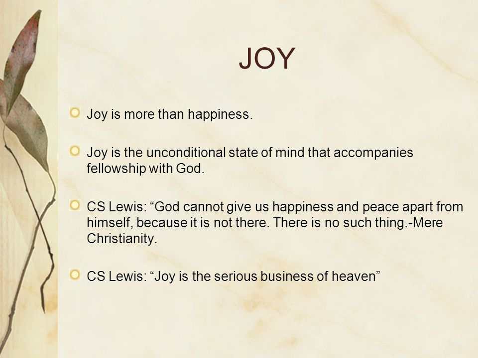 JOY Joy is more than happiness.