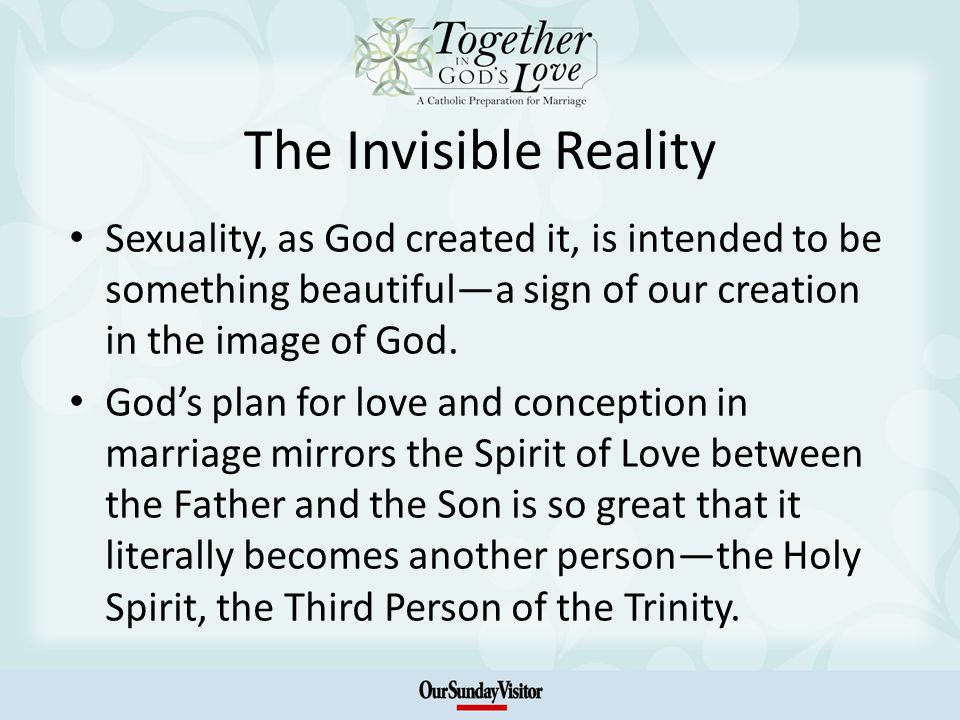 The Invisible Reality Sexuality, as God created it, is intended to be something beautifula sign of our creation in the image of God.