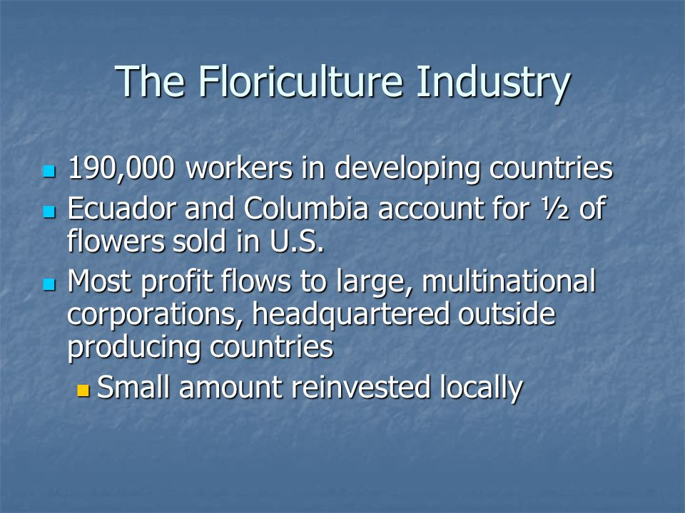 The Floriculture Industry 190,000 workers in developing countries 190,000 workers in developing countries Ecuador and Columbia account for ½ of flower