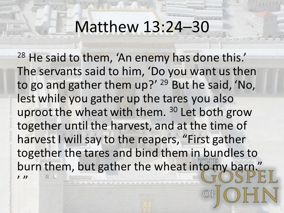 Matthew 13:24–30 28 He said to them, An enemy has done this.