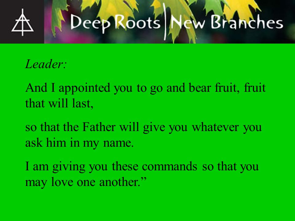 Leader: And I appointed you to go and bear fruit, fruit that will last, so that the Father will give you whatever you ask him in my name. I am giving