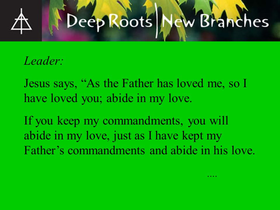 Leader: This is my commandment, that you love one another as I have loved you.