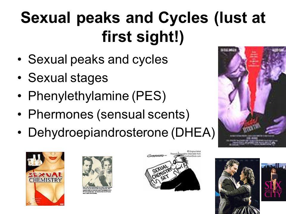 Love Styles & Sexual Styles Eros Ludus Storge Pragma Mania Agape Romantic Sensual Imaginative Emotional