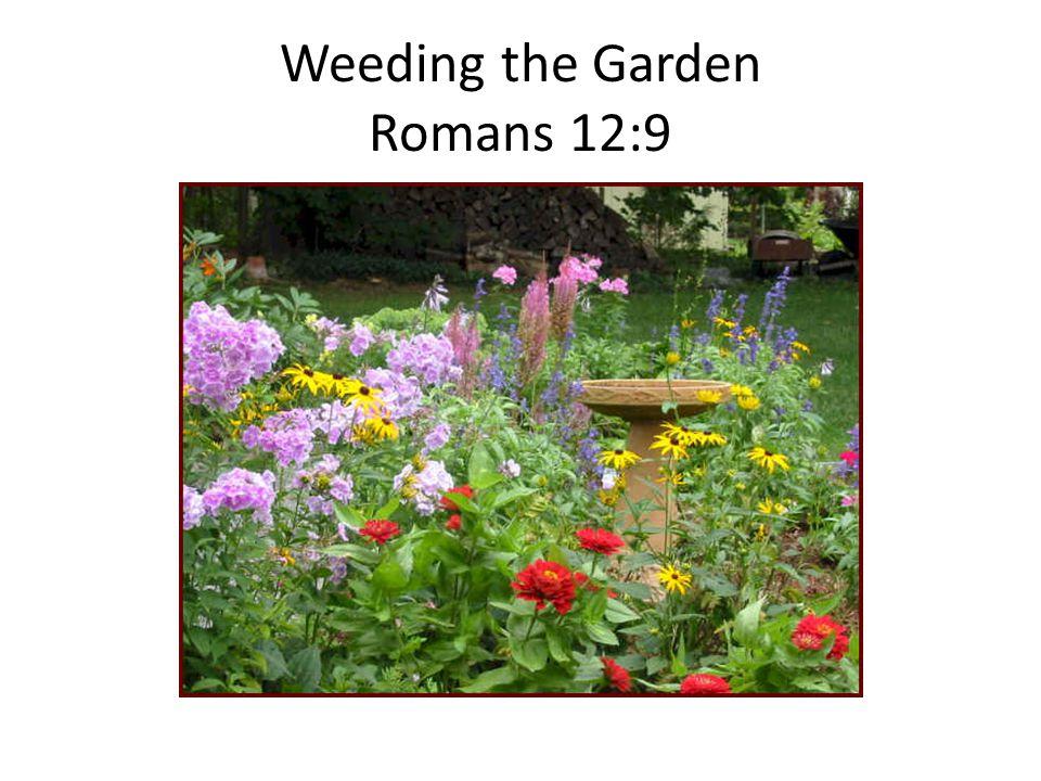 Weeding the Garden Romans 12:9