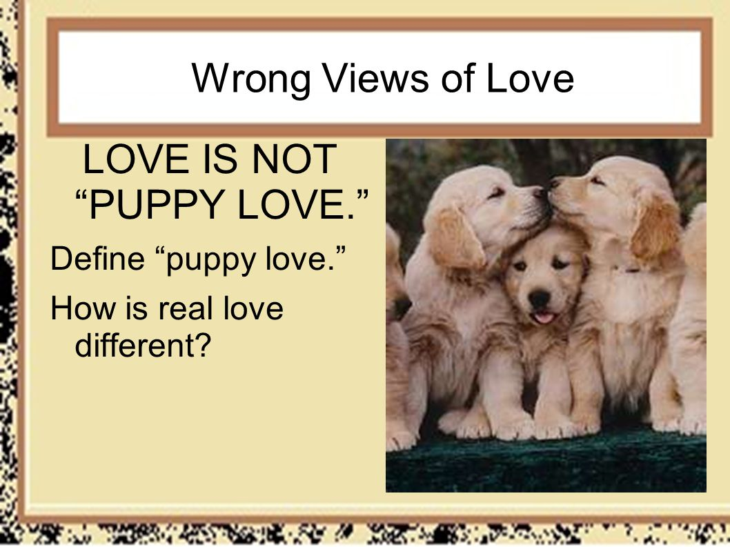 Wrong Views of Love LOVE IS NOT PUPPY LOVE. Define puppy love. How is real love different?