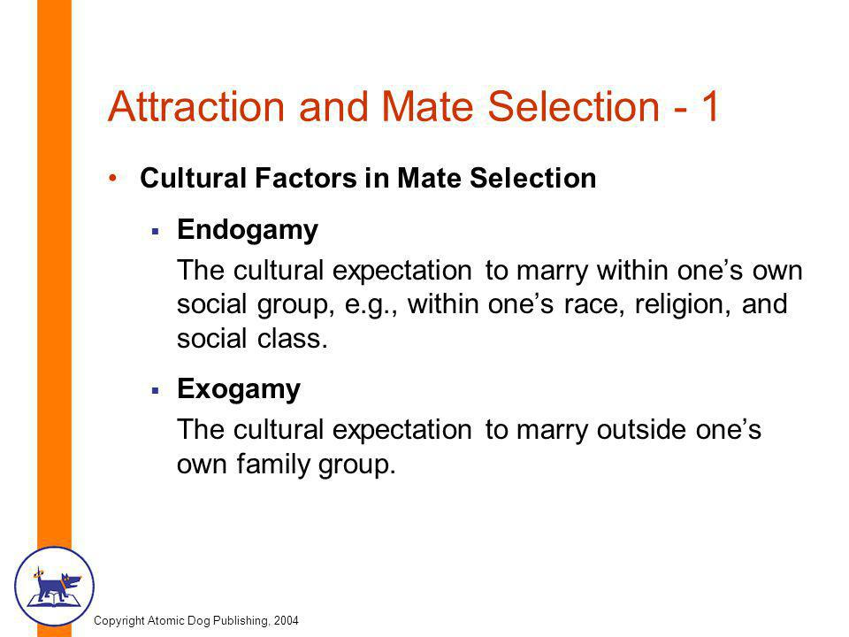 Copyright Atomic Dog Publishing, 2004 Attraction and Mate Selection - 1 Cultural Factors in Mate Selection Endogamy The cultural expectation to marry within ones own social group, e.g., within ones race, religion, and social class.