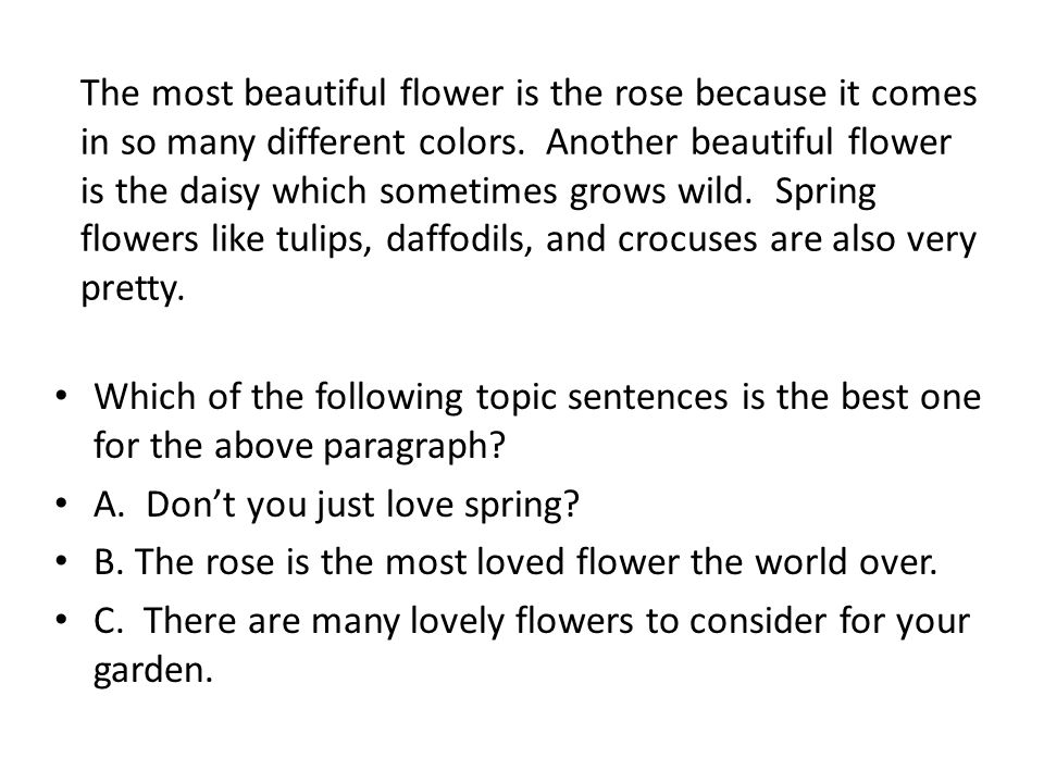 The most beautiful flower is the rose because it comes in so many different colors.