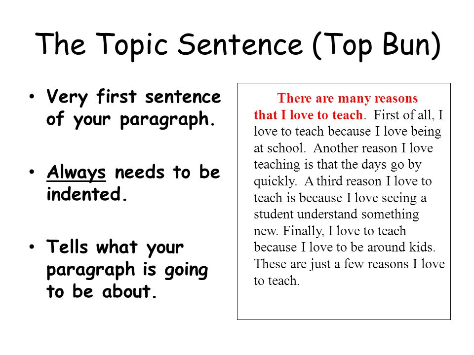 The Topic Sentence (Top Bun) Very first sentence of your paragraph. Always needs to be indented. Tells what your paragraph is going to be about. There
