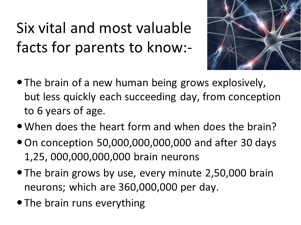 Six vital and most valuable facts for parents to know:- The brain of a new human being grows explosively, but less quickly each succeeding day, from c