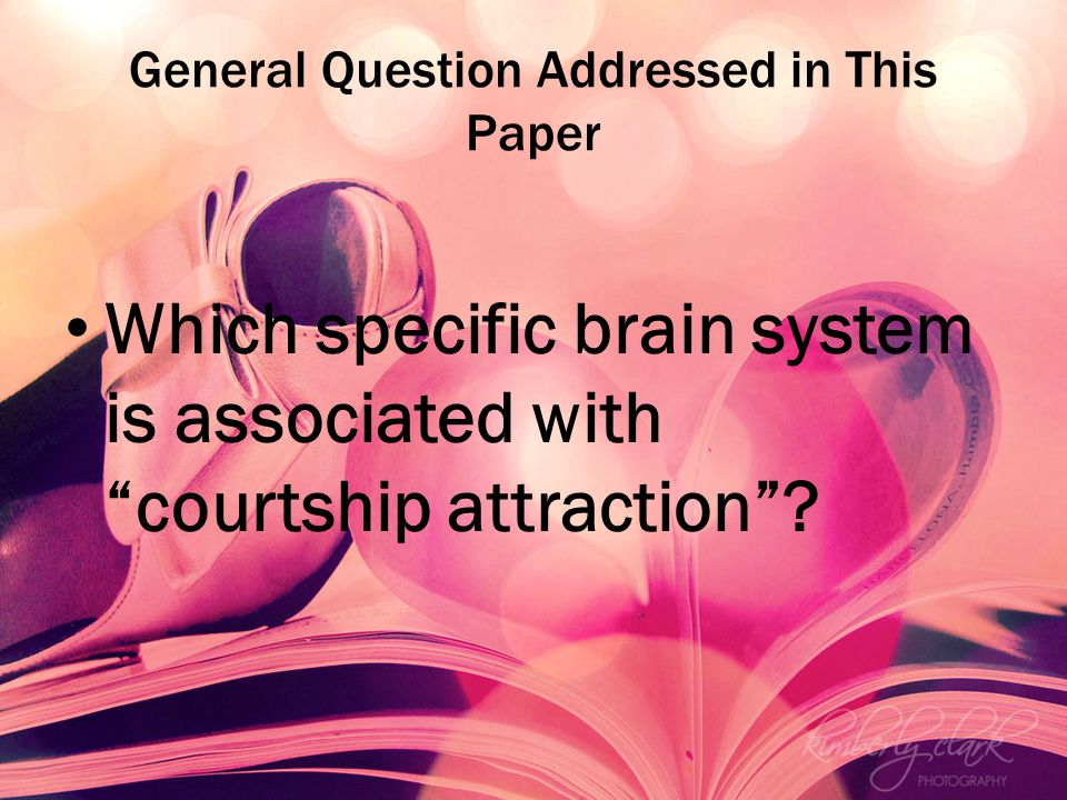 General Question Addressed in This Paper Which specific brain system is associated with courtship attraction?