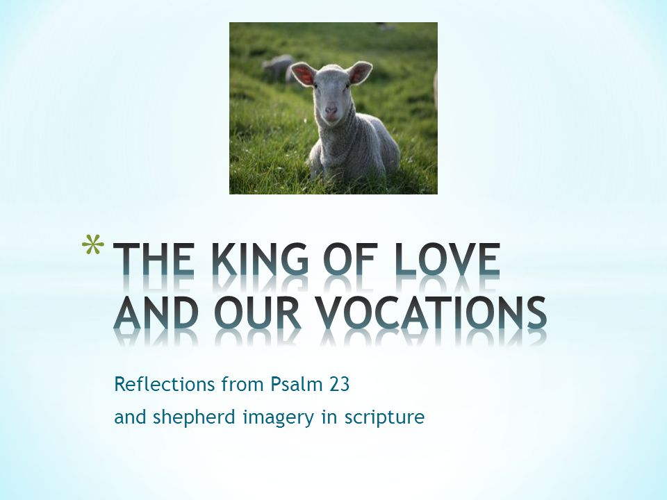 Reflections from Psalm 23 and shepherd imagery in scripture