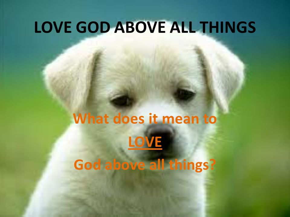 LOVE GOD ABOVE ALL THINGS What does it mean to LOVE God above all things