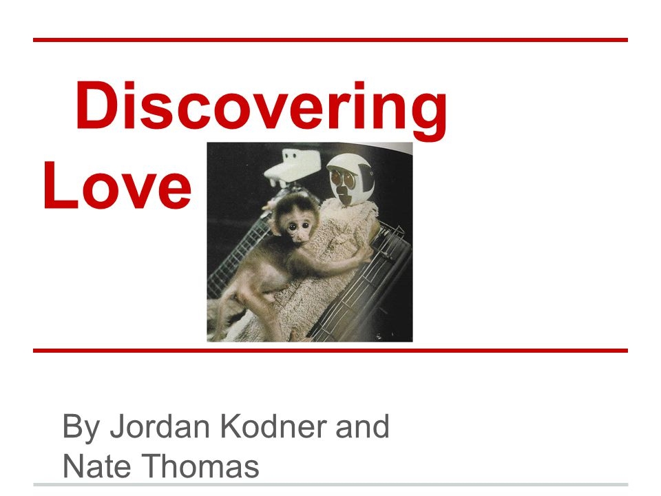 Discovering Love By Jordan Kodner and Nate Thomas