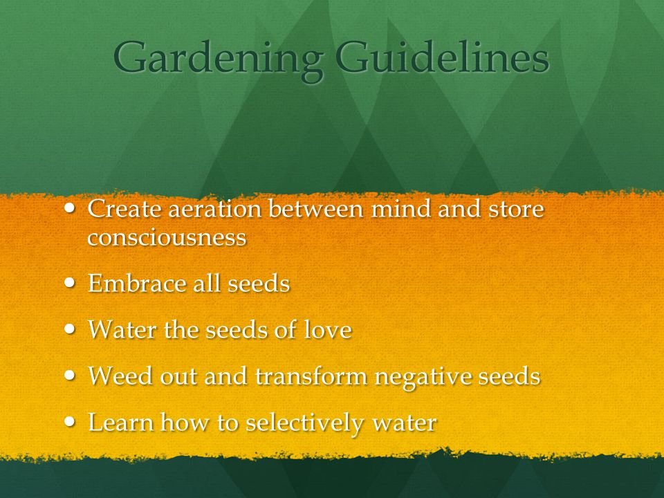 Gardening Guidelines Create aeration between mind and store consciousness Create aeration between mind and store consciousness Embrace all seeds Embrace all seeds Water the seeds of love Water the seeds of love Weed out and transform negative seeds Weed out and transform negative seeds Learn how to selectively water Learn how to selectively water