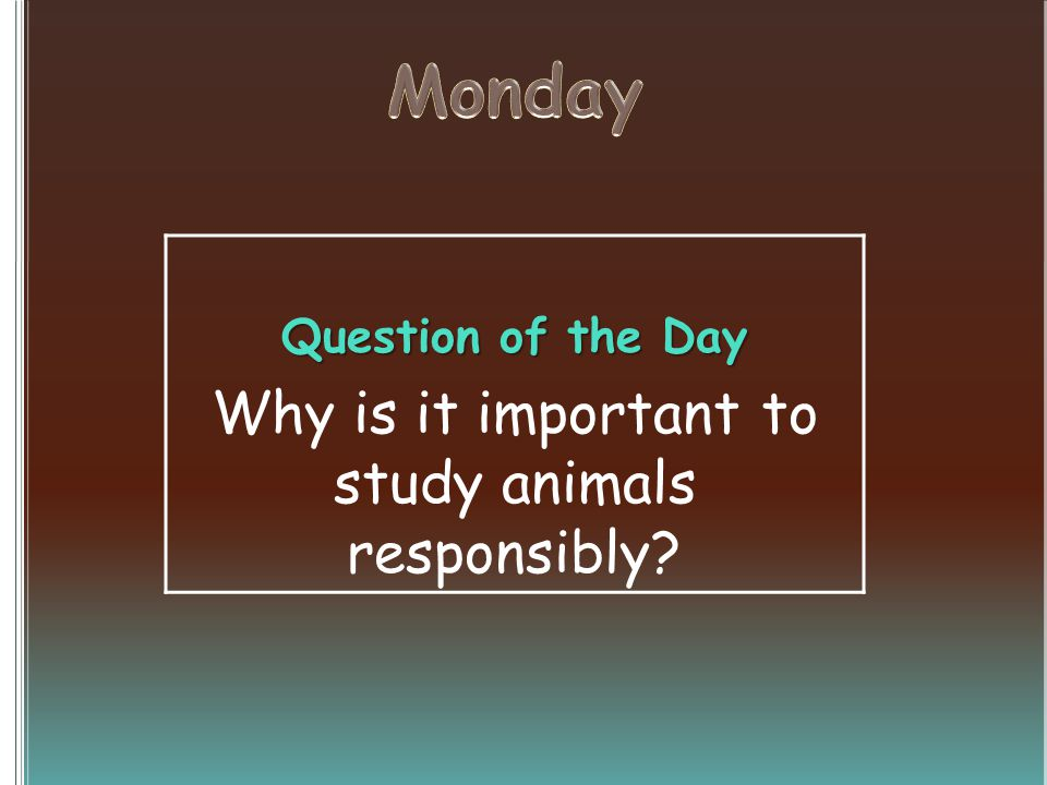 Question of the Day Why is it important to study animals responsibly?