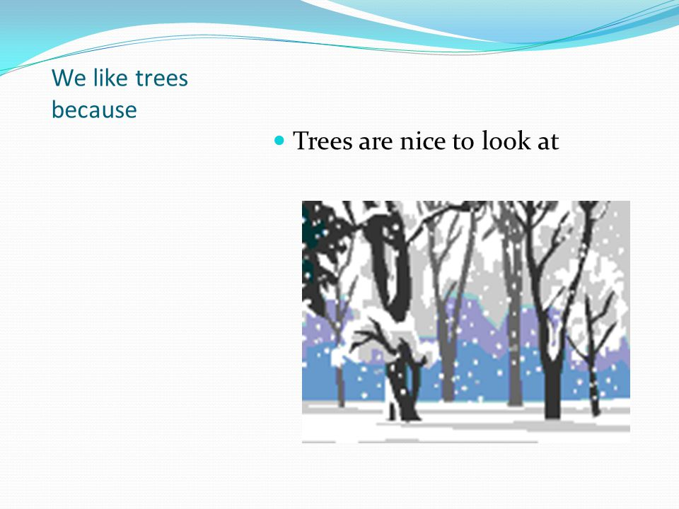 We like trees because Trees are nice to look at