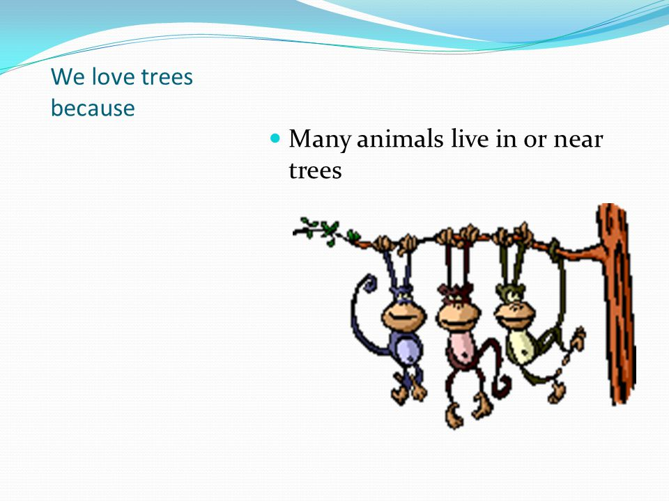 We love trees because Many animals live in or near trees