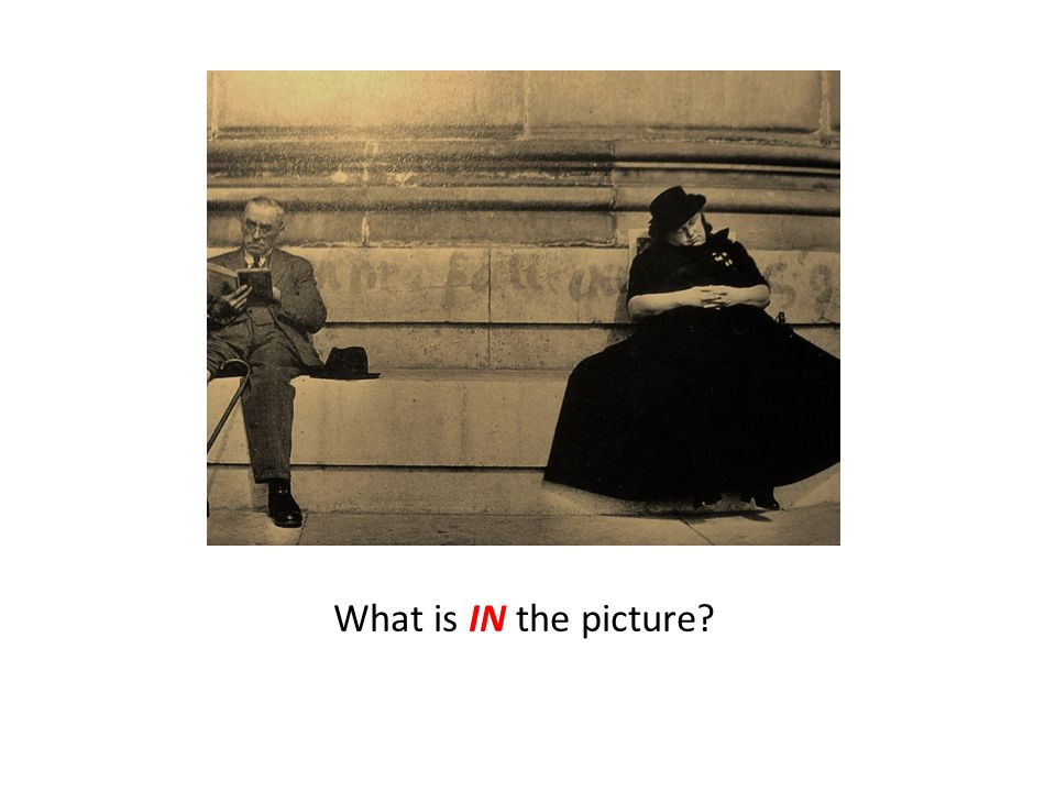 What is IN the picture?
